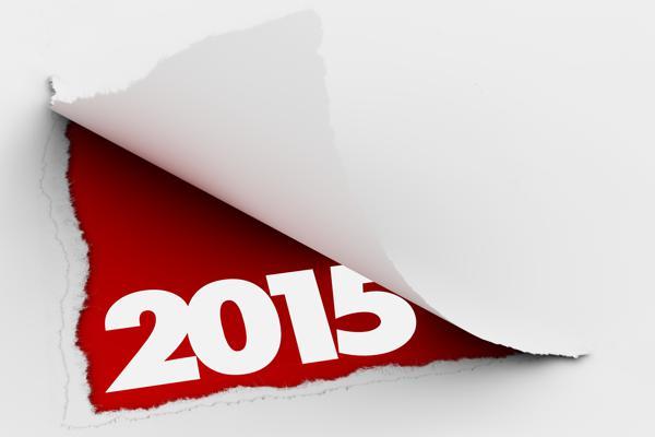 скачать игру 2015 через торрент - фото 8